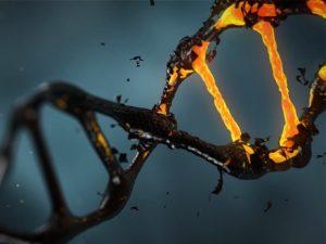 Potenciálne choroby detí na základe skríningu DNA