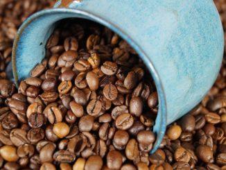 Malé okénko do historie kávy magazín Kulatý svět