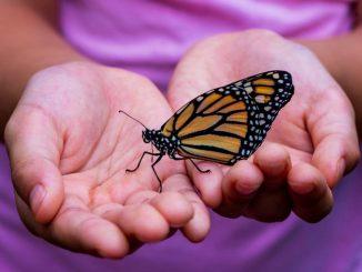 Jak skrze uzdravení uskutečnit osobní transformaci