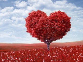 Nějaké já ve mně chce být milováno